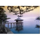 craniopuntura para dor de cabeça frontal em sp Moema