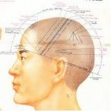 craniopuntura para dor de cabeça Aeroporto